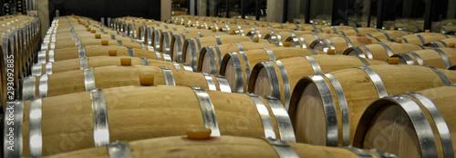 Fotografie, Obraz Red wine barrels in Ribera del Duero winery. Red wine in Spain.
