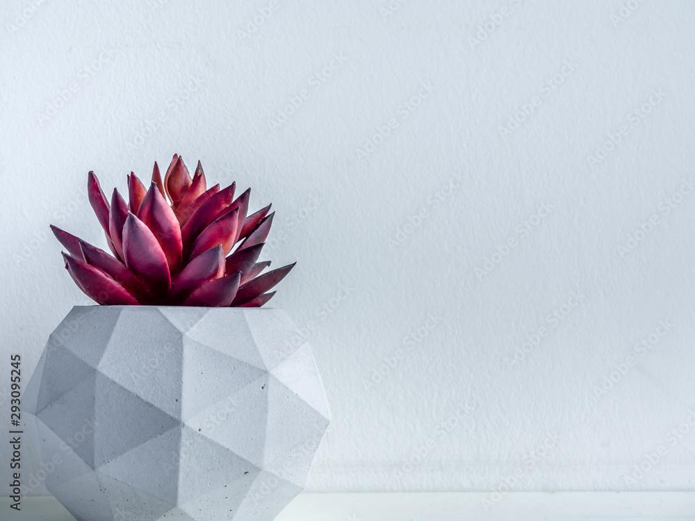 Fototapeta Concrete pot. Modern geometric concrete planter.