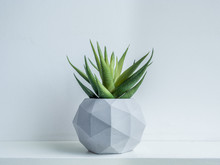 Concrete Pot. Modern Geometric...