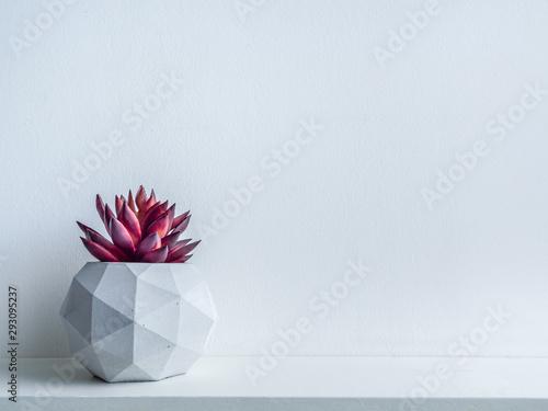 Poster Vegetal Concrete pot. Modern geometric concrete planter.