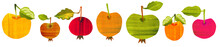 Apple Set. Food Illustration W...