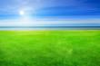 Leinwanddruck Bild - beautiful seaside lawn background