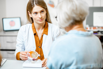 Female ophthalmologist showing the eye model to a senior patient during a medical consultation in the ophthalmologic office