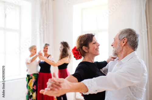Group of senior people in dancing class with dance teacher. - 293109270