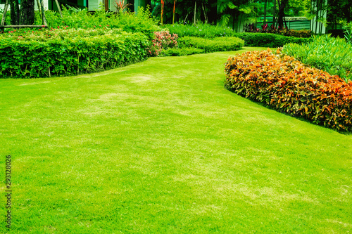 Foto auf AluDibond Lime grun Green grass, The front lawn for background, Garden landscape design, Garden decoration for the background.