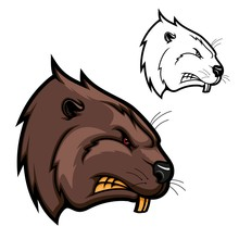 Head Of Beaver Animal Icon, Angry Rodent Mascot