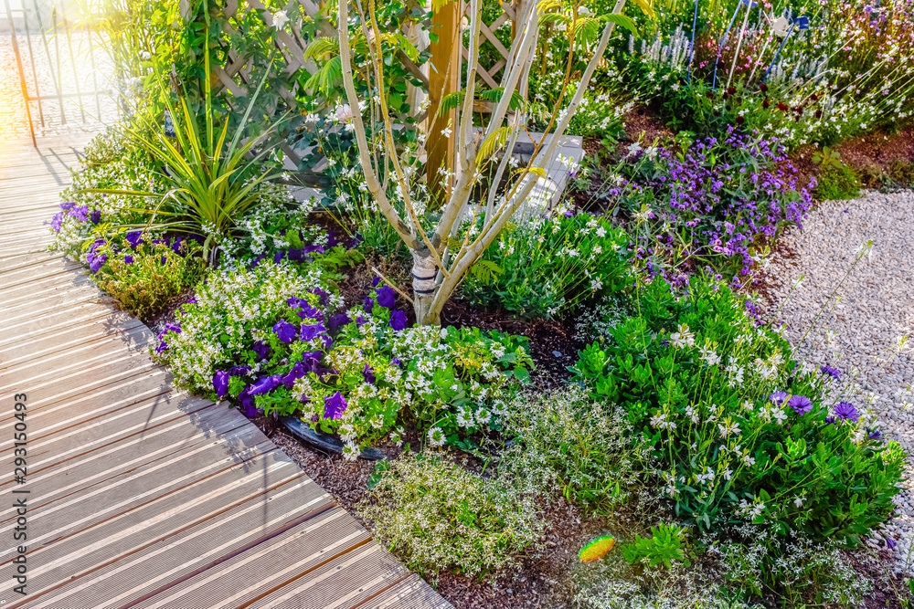 Fototapety, obrazy: beautiful terrace and wooden driveway in the blooming garden