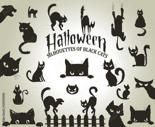 Valokuva Halloween decorative silhouettes of black cats