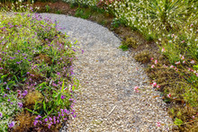 Small Pebble Path In A Beautif...