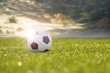 canvas print picture - Lederball liegt bei Dämmerung im Gras