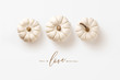 canvas print picture - minimalist autumn / fall concept with three white pumpkins in a row and calligraphy inspired message, perfect as seasonal background, banner, or greeting card - flat lay / top view