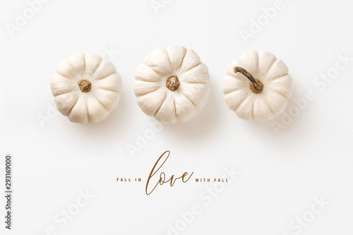 Foto auf AluDibond Natur minimalist autumn / fall concept with three white pumpkins in a row and calligraphy inspired message, perfect as seasonal background, banner, or greeting card - flat lay / top view