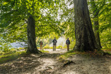 Fototapeta Kamienie - Park Narodowy Jasmund - Rugia