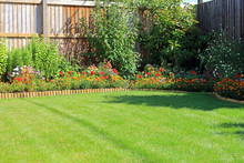 Summer Flower Borders Surround...