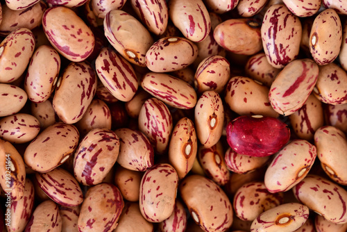 Fototapeta Delicious footage and background of dried quail beans on a heap for preserving obraz