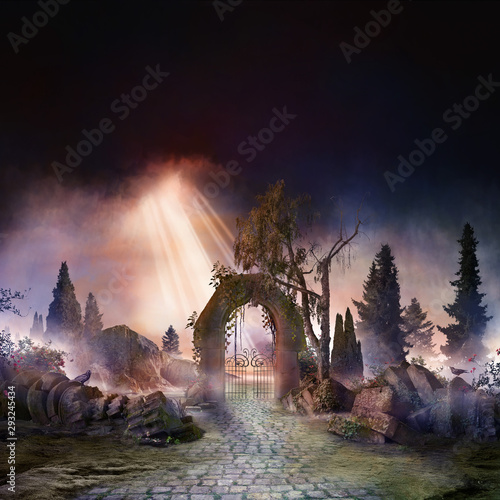 Photographie wuthering heights, dark, atmospheric landscape with archway and fir trees, sunbe