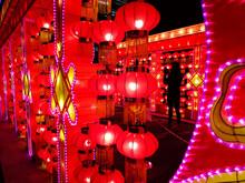 Chinese Red Lanterns Displayed...