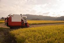 収穫期の水田とコンバ...
