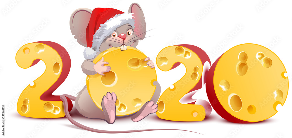 Fototapety, obrazy: 2020 year of mouse to Chinese calendar. Santa mouse holding swiss cheese