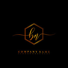 BN Initial Luxury Handwriting ...
