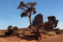 Desert Monument