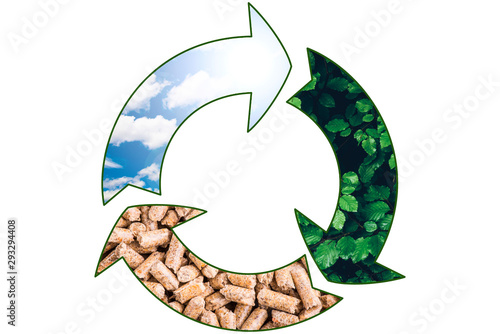 pellet biomass renewable fuel - green renewable sustainable economy Canvas Print