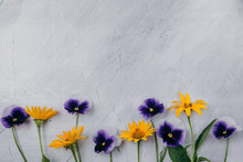 Purple And Yellow Flowers On A Marble Background.Copy Space