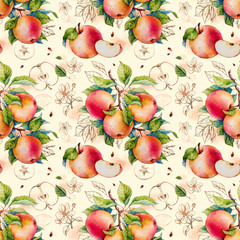 Panel Szklany Owoce Apples. Watercolor botanical illustration. Pattern