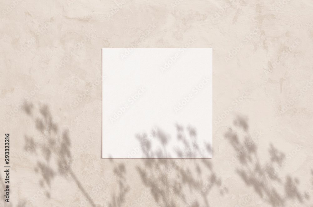 Fototapeta Summer modern sunlight stationery mockup scene. Flat lay top view blank greeting card with herbs shadow overlay on grunge biege background.