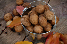 Bucket Of Walnuts On A Wooden Background In The Garden
