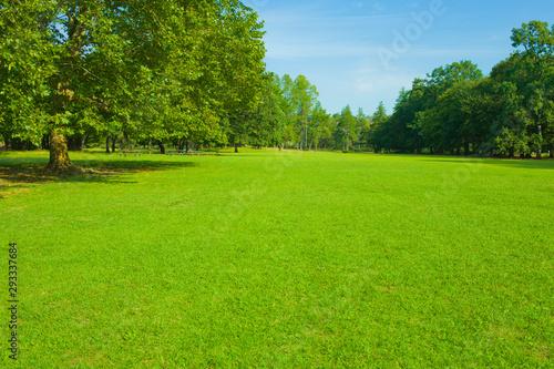 Fotografiet park lawn