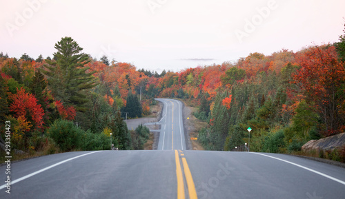 Autumn morning fog on Highway 60 in Algonquin Park, Canada Wallpaper Mural
