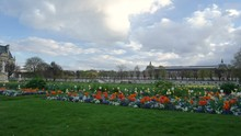 Evening Walk In The Tuileries Garden