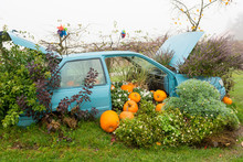 Many Pumpings And Plants Invading Old Car Outdoor.