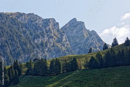 Montagnes des Alpes Suisses