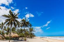 Palomino Beach At La Guajira I...