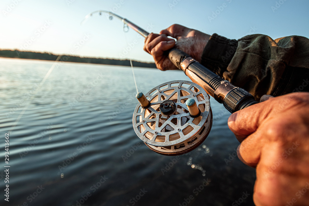 Fototapeta Hands of a man in a Urp plan hold a fishing rod, a fisherman catches fish at dawn. Fishing hobby vacation concept. Copy space.