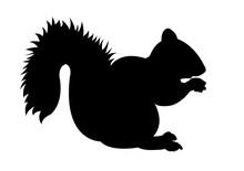 Squirrel Black Silhouette Vect...