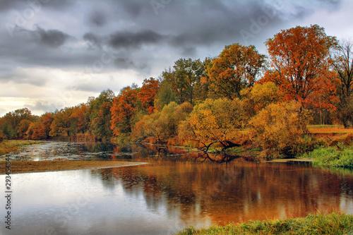 Orange autumn trees on riverbank. Golden Autumn Landscape Wallpaper Mural