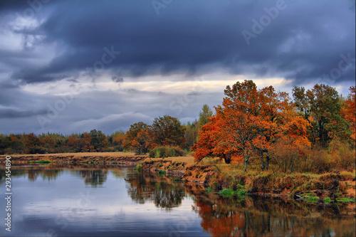 Photo  Orange autumn trees on riverbank. Golden Autumn Landscape