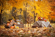 Autumn Decor In The Garden. Pumpkins Lying In Wooden Box On Autumn Background.  Old Fashioned Wooden Distaff. Autumn Time. Thanksgiving Day.