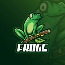 Frog Mascot Logo Design Vector...