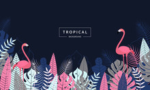 Tropical Background With Flami...
