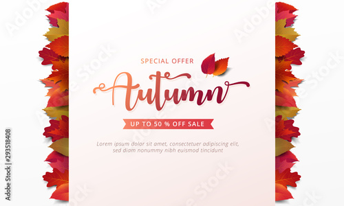 Obraz Autumn sale banner layout template decorate with maple and realistic leaves in warm color tone for shopping sale or promotion poster, leaflet and web banner. Vector illustration . - fototapety do salonu