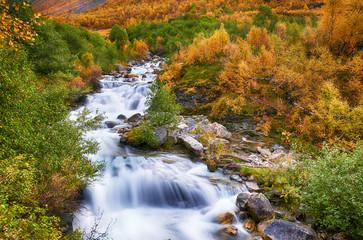 Fototapeta Rzeki i Jeziora Beautiful autumn landscape with yellow trees and wriver