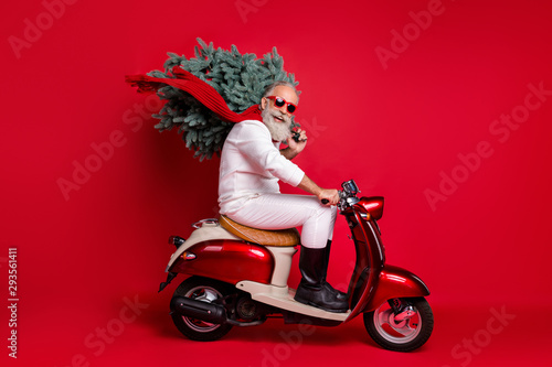 Cuadros en Lienzo Full size profile side photo of cheerful pensioner on motorcycle carry fir tree