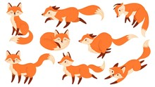 Cartoon Red Fox. Funny Foxes W...