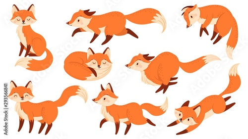 Cartoon red fox Wallpaper Mural