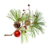 Pine Branch With Cones, Christmas Decoration And Red Dry Berries