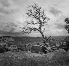 USA Grand Canyon / Amerika